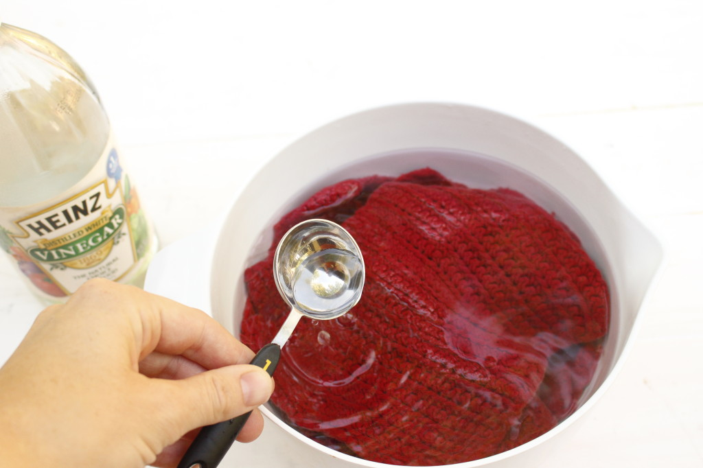 Mildew Dishcloth solution