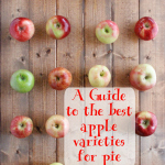Apple Varieties for Pie