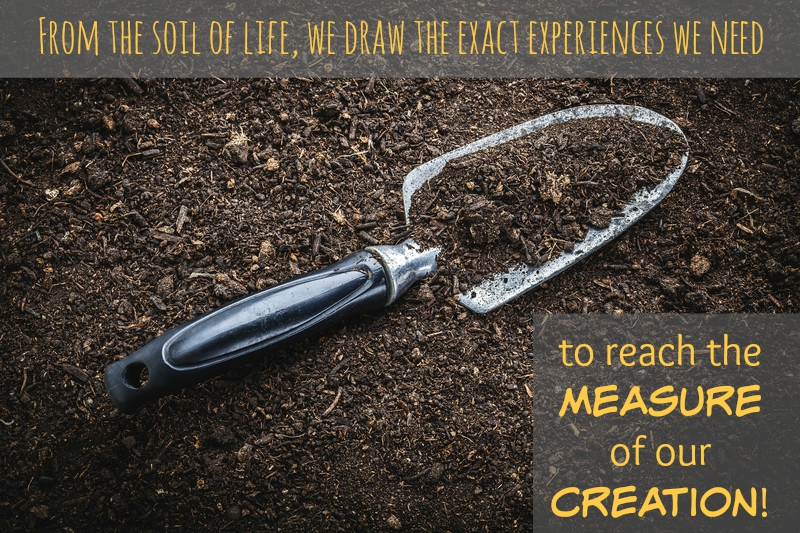 measure of our creation